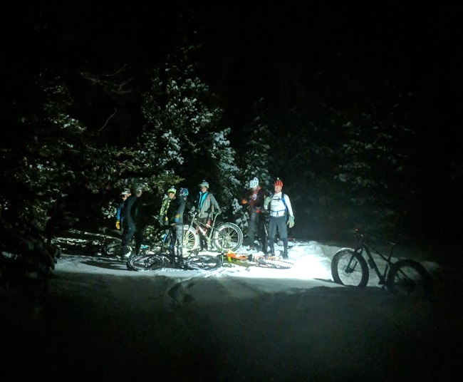 A group of fat bike cyclists huddled amongst the trees at night