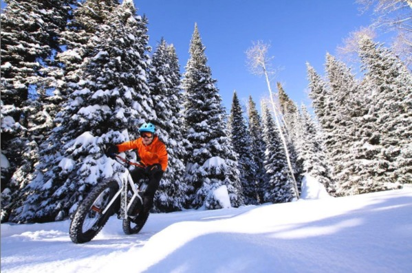 Person in an orange jacket and blue helmet riding through snow and pine trees on a fat bike