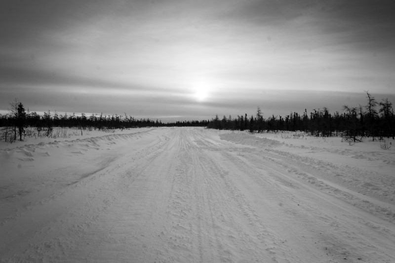 Empty snow-covered and tree-lined trail with sun setting in the distance
