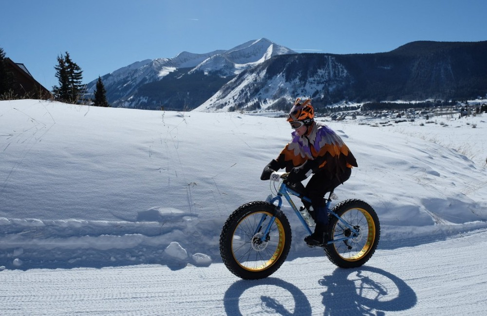 Fat bike rider in an owl suit on a groomed race course