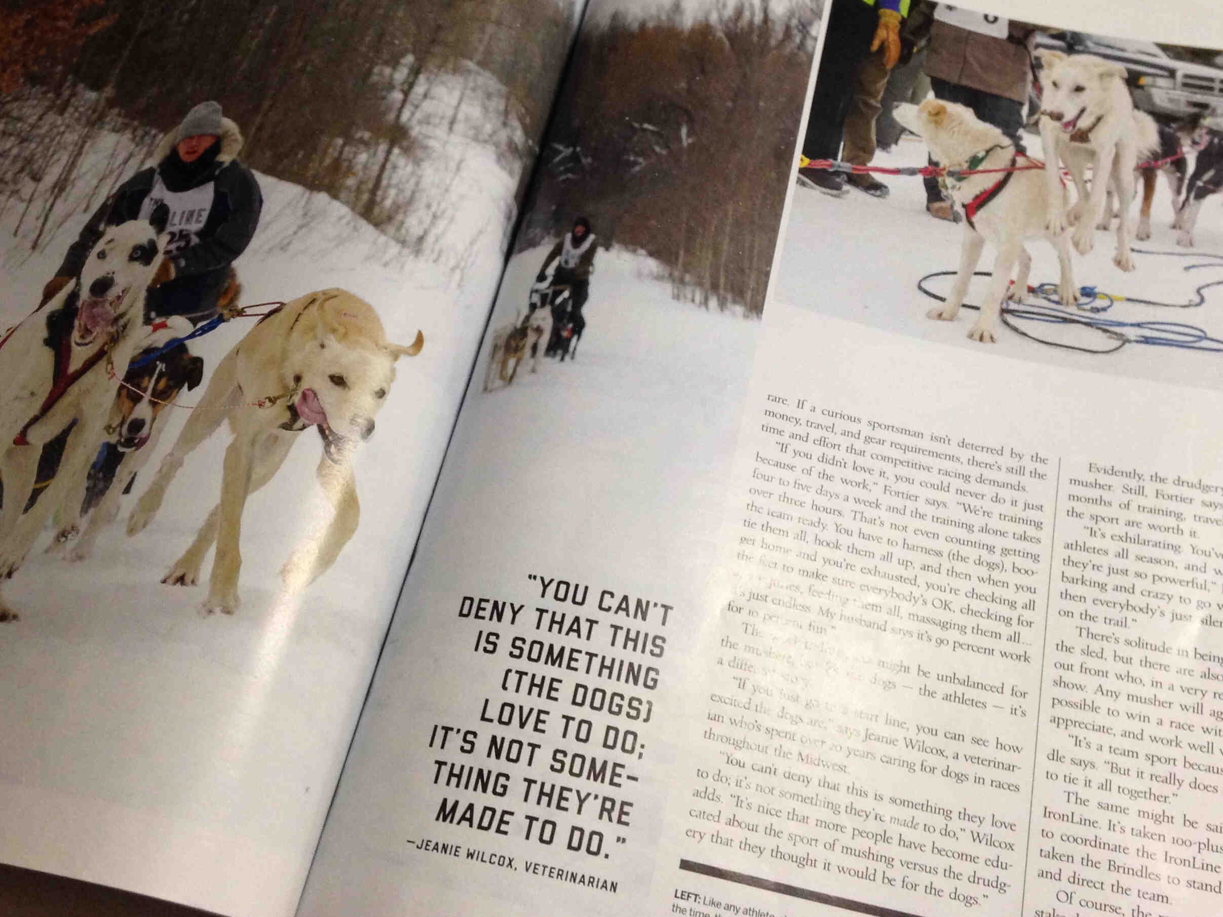Magazine article featuring sled dogs and Jeanie Wilcox quote
